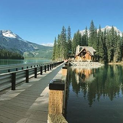 La cabane au Canada de Catherine pour l'été. 🌲🏔😍🇨🇦 #Repost @cattswatters She's everything I hoped she'd be... and more! #passionithq #passionstage #internship #emeraldlakelodge #yohonationalpark #bc